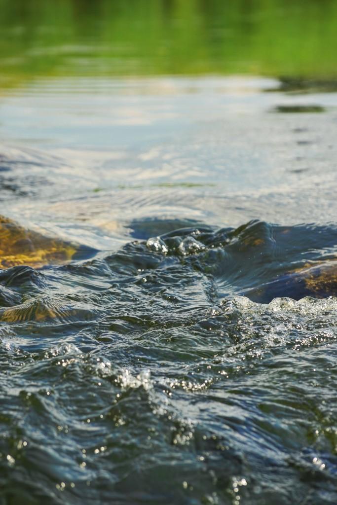 Река Судогда в районе деревни Лаврово 10