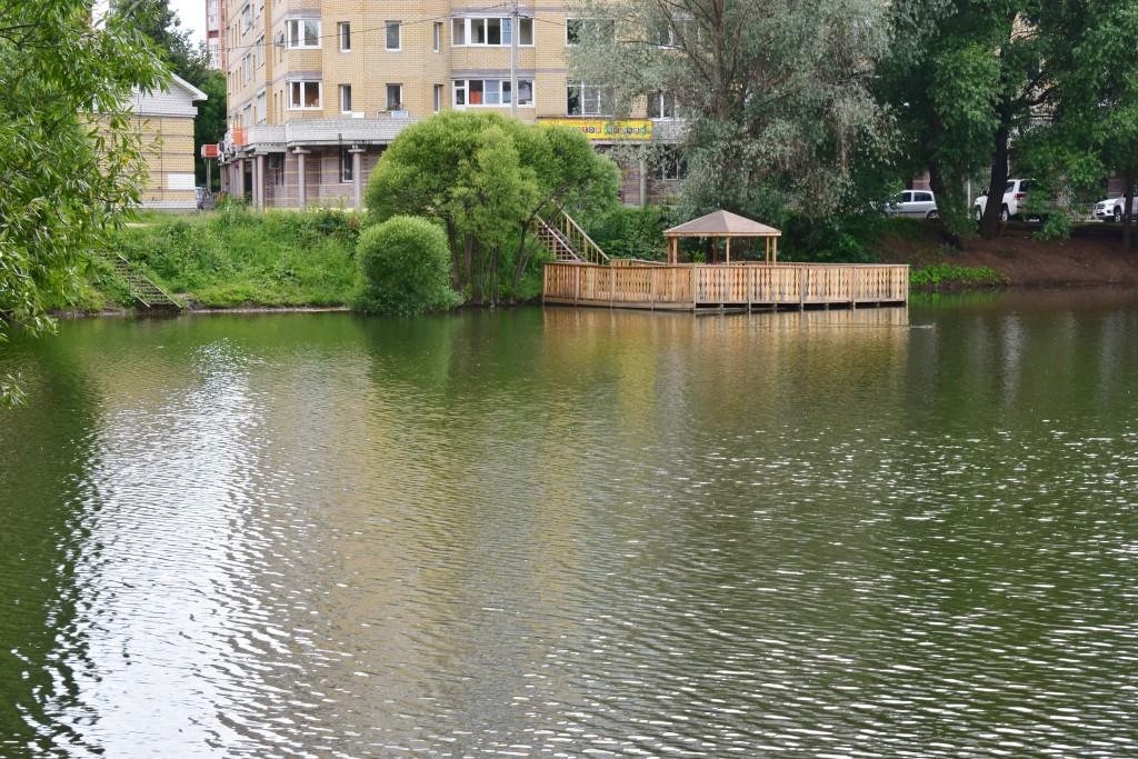 Соловьиный пруд во Владимире с карасями 02