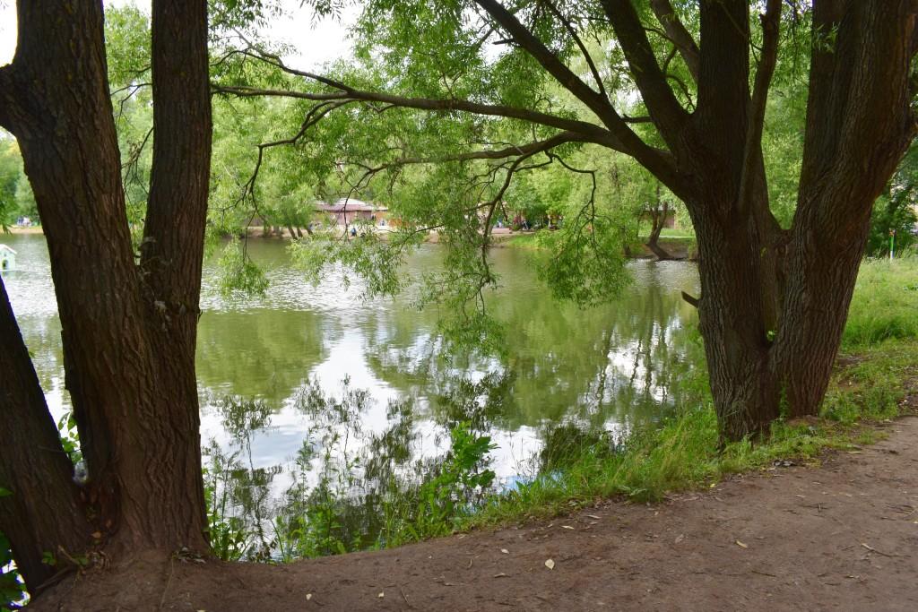 Соловьиный пруд во Владимире с карасями 04