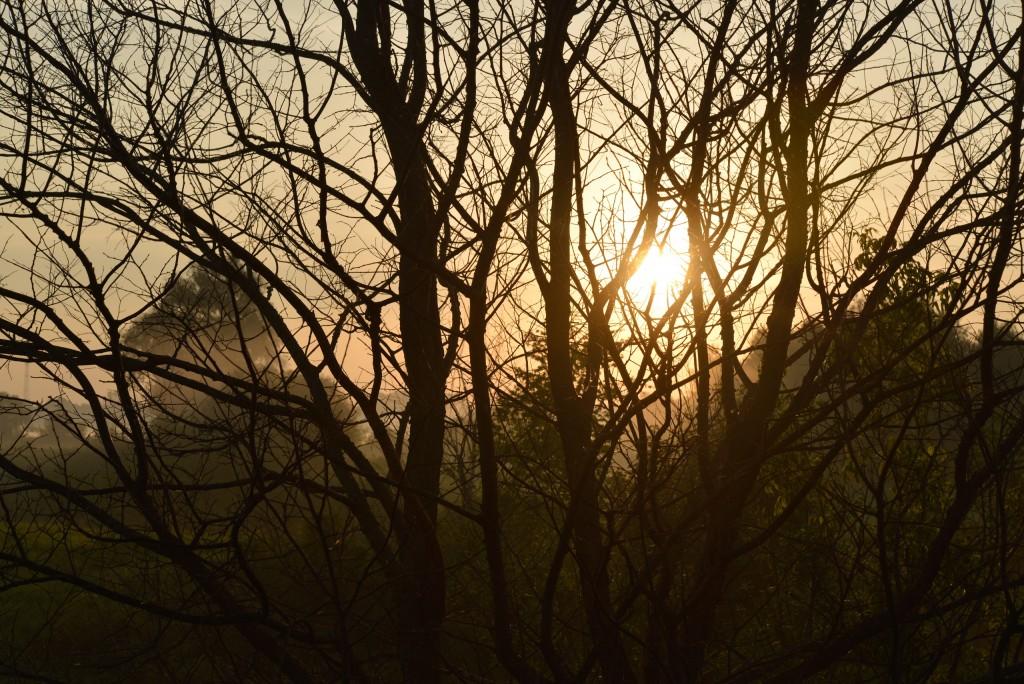 Утренняя выходка к церкви Покрова-на-Нерли и к стрелке рек Нерль и Клязьма 08