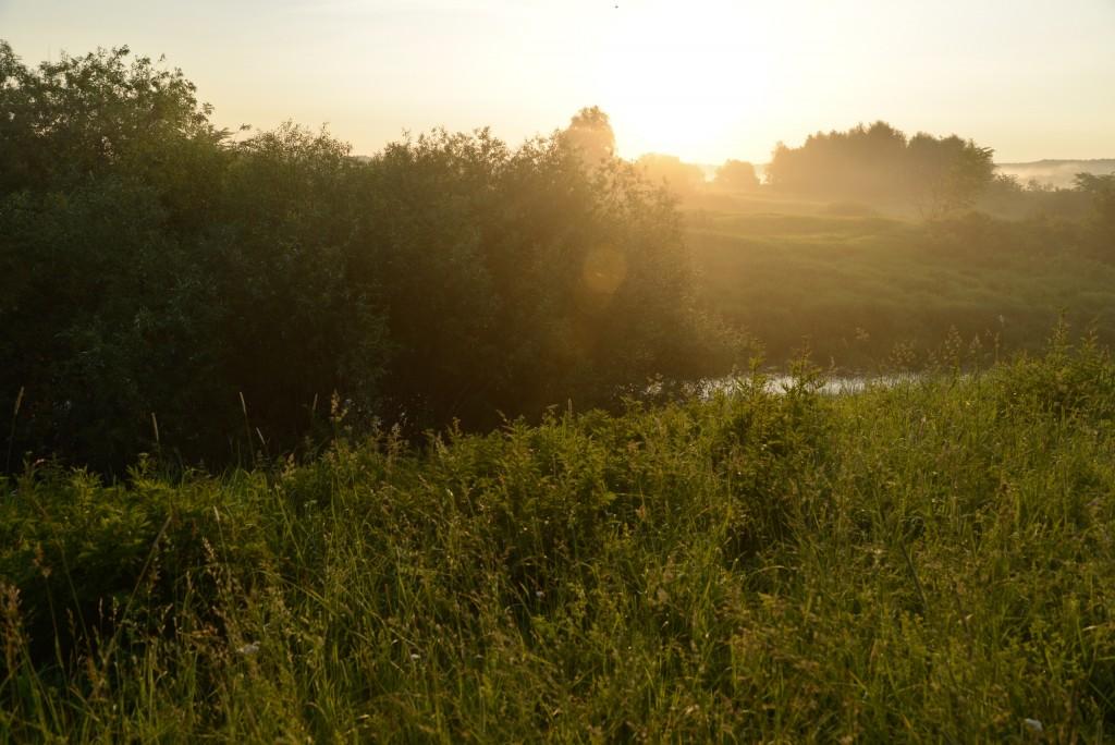 Утренняя выходка к церкви Покрова-на-Нерли и к стрелке рек Нерль и Клязьма 10