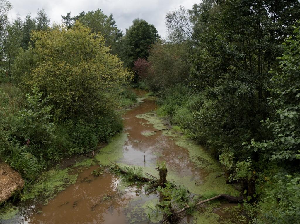 Клязьма у Марково, речка Верхулька, протекающая через село (г. Покров) 02