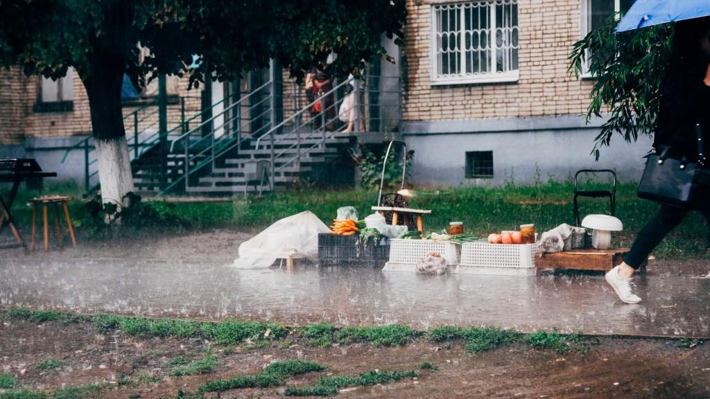 Летний дождь во Владимире 08