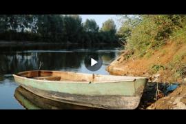 Места Фатьянова — тропинка к реке Клязьма у Петрино