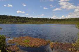 Озеро Плавучее, пос. Мостострой