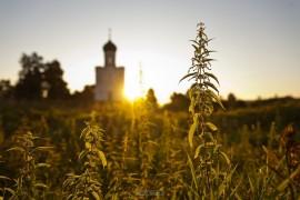 Рассвет в Боголюбово (2018_08_09)