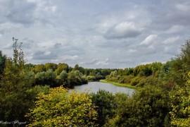 Безымянное озеро близ деревни Кочетиха (Ковровский р-он)