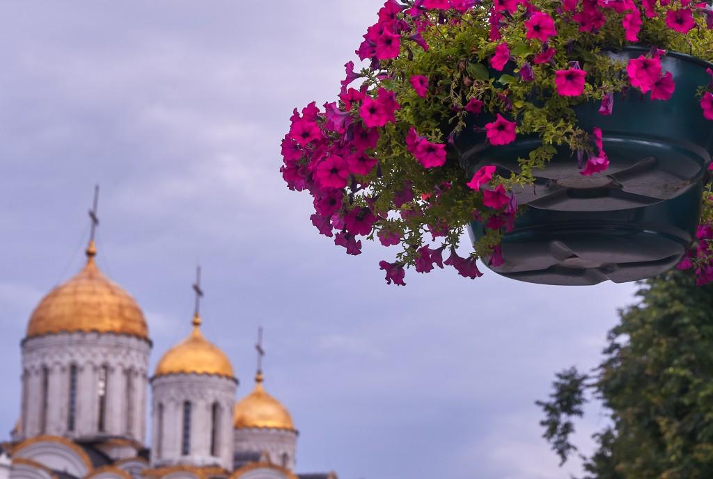 Июнь-июль 2018г., город Владимир 02
