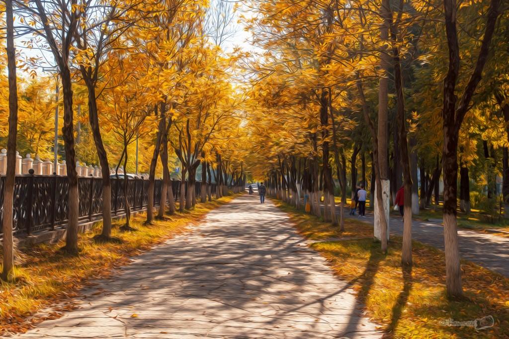 Ковров. Осень на 100-метровке