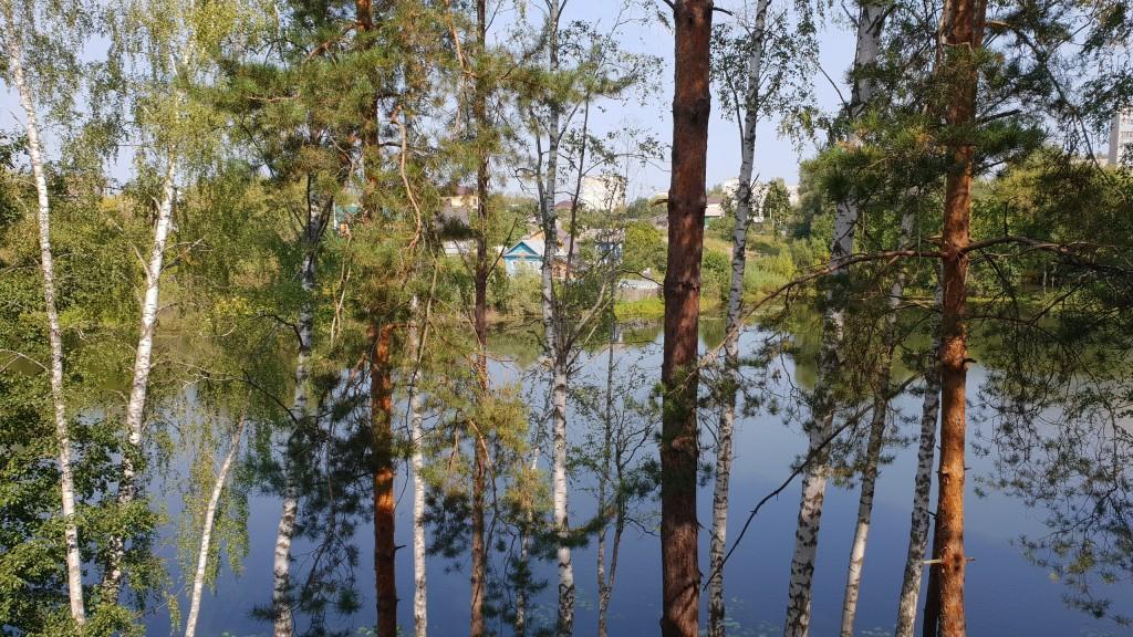 Муром, река Вербовка