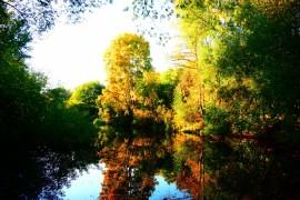 Пруды на реке Лыбедь