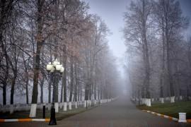 Начало ноября неожиданно порадовало…туманом… (2018, Владимир)