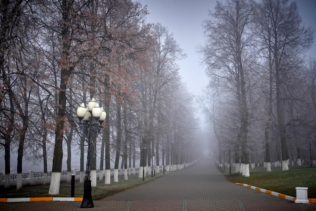 Начало ноября неожиданно порадовало...туманом 01