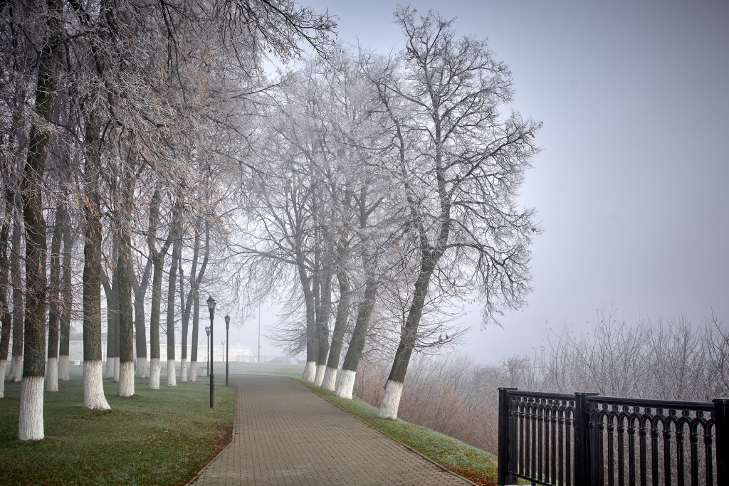 Начало ноября неожиданно порадовало...туманом 04
