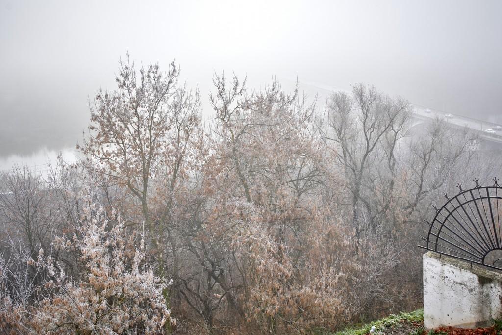 Начало ноября неожиданно порадовало...туманом 06