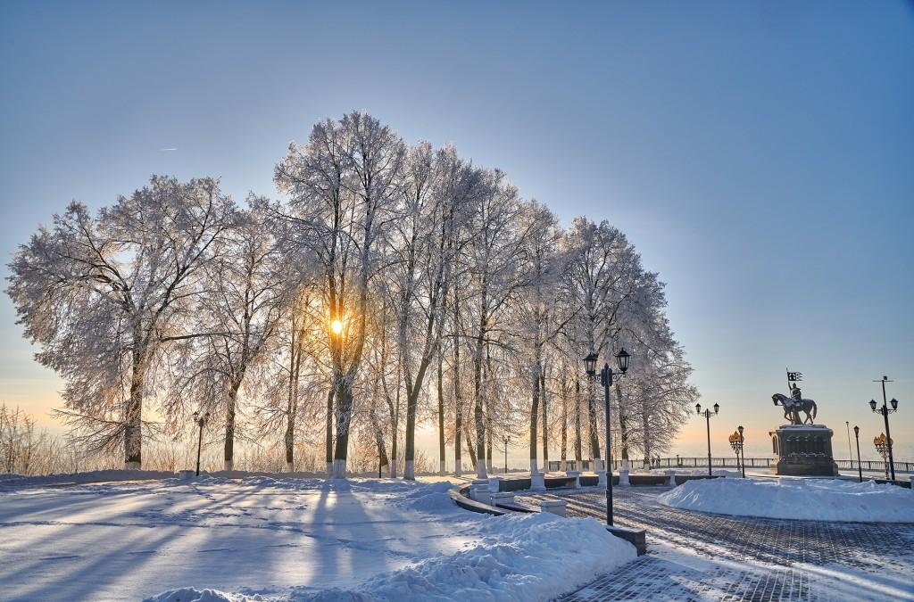 Владимир, мороз подарил удивительные картины. 01
