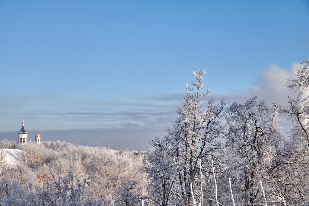Владимир, мороз подарил удивительные картины. 02