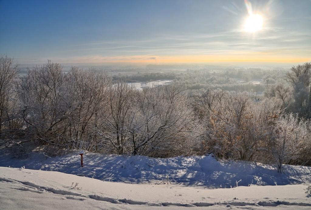 Владимир, мороз подарил удивительные картины. 03