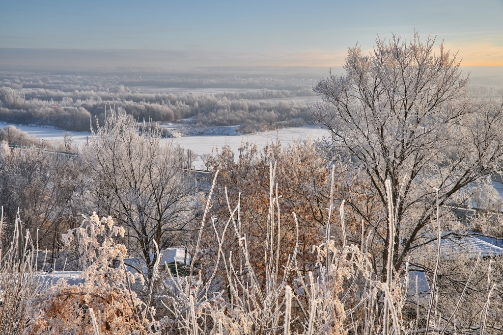 Владимир, мороз подарил удивительные картины. 06
