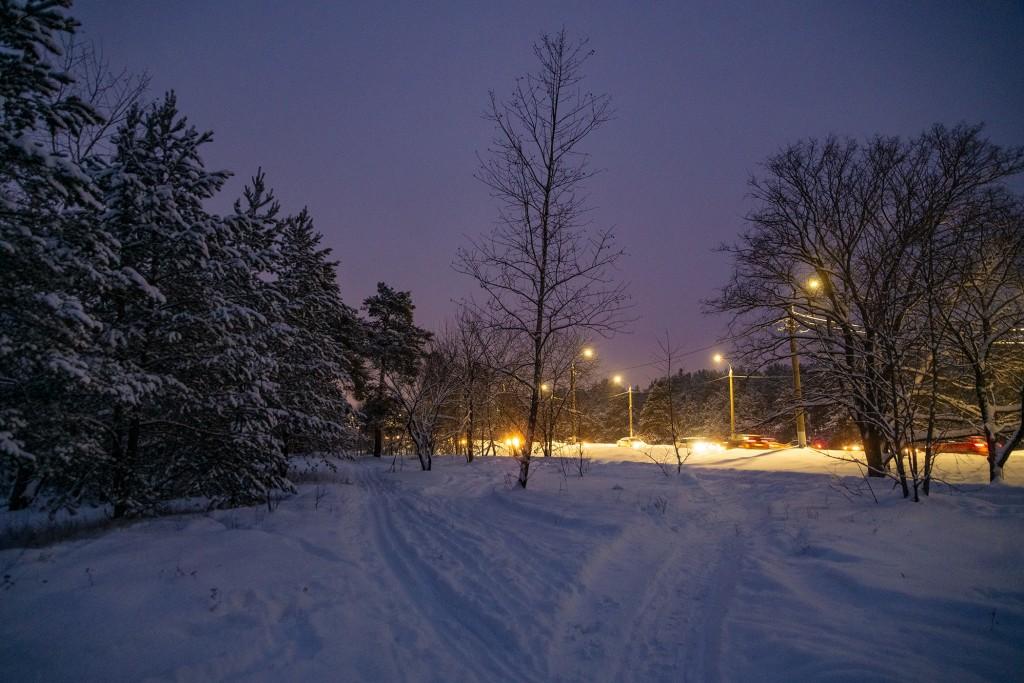 Владимир, январь 2019, Загородный парк 02