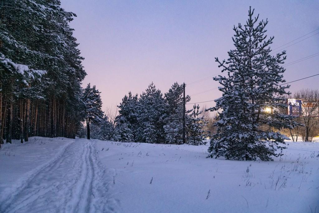 Владимир, январь 2019, Загородный парк 07