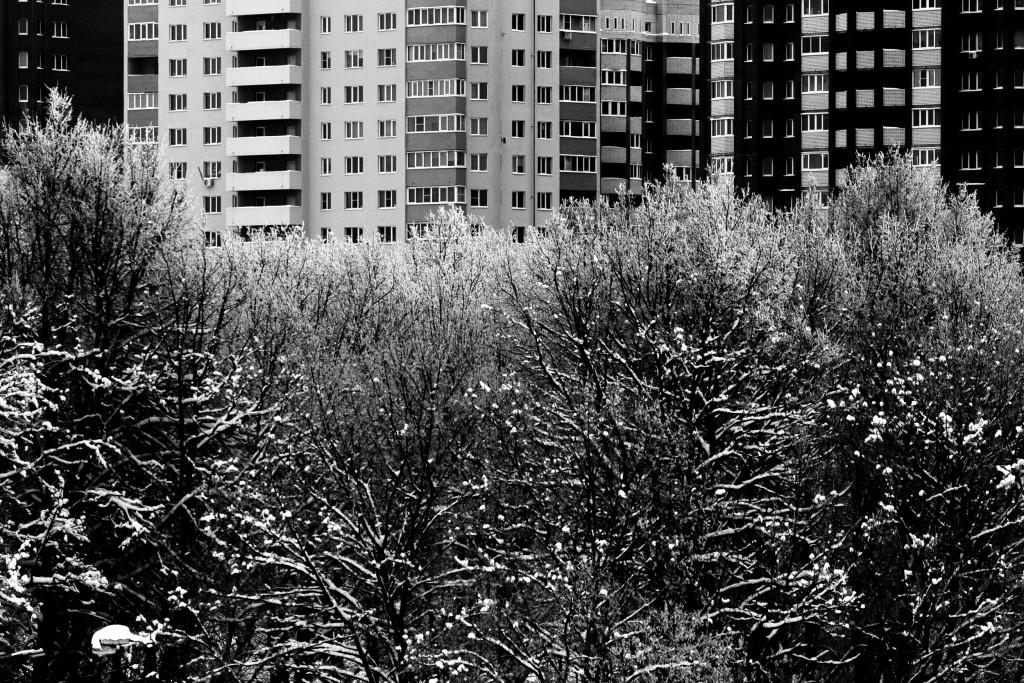 Граница города и леса, г. Владимир 03