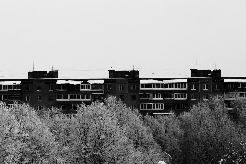 Граница города и леса, г. Владимир 04