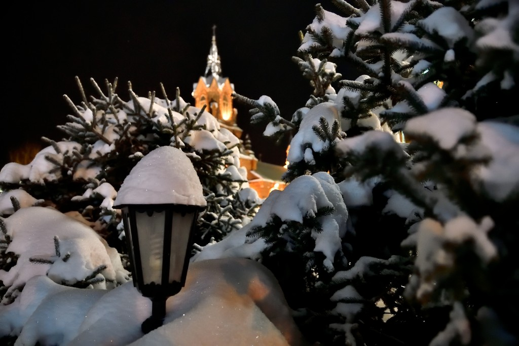 Рождественский Владимир 2019 08