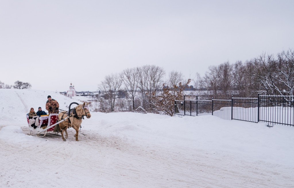 Сады огромные, охваченные снегом 03