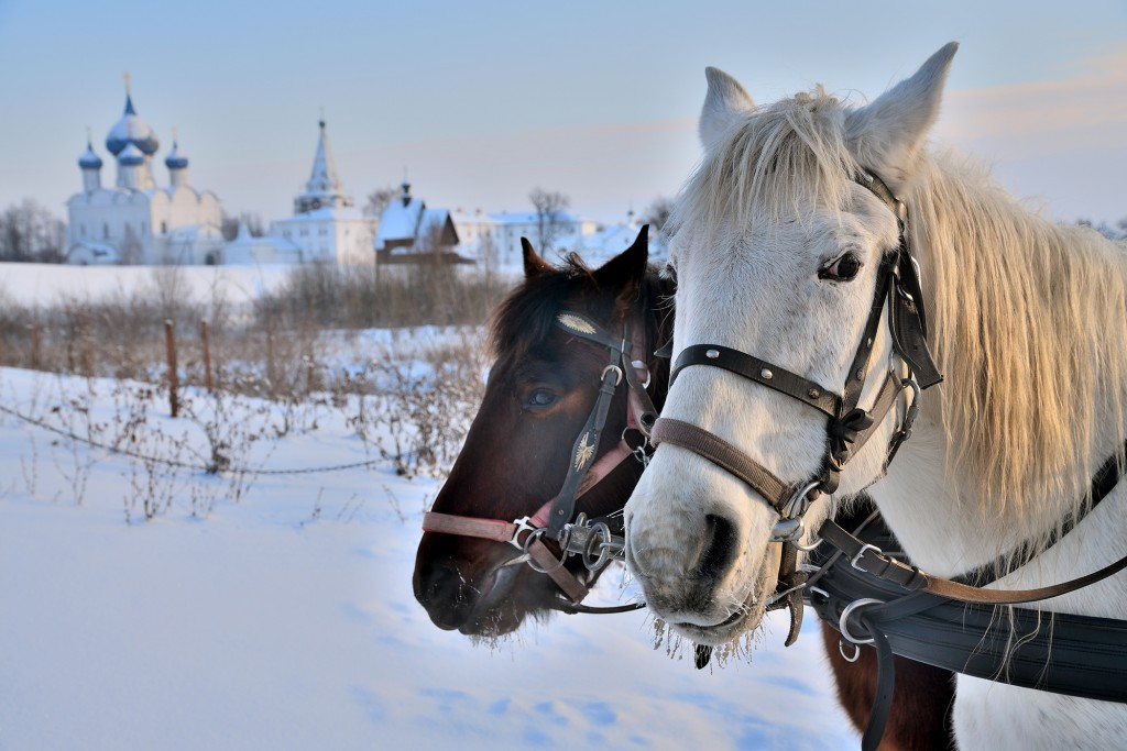 декабрь 2018, Суздаль, Владимирская область 08