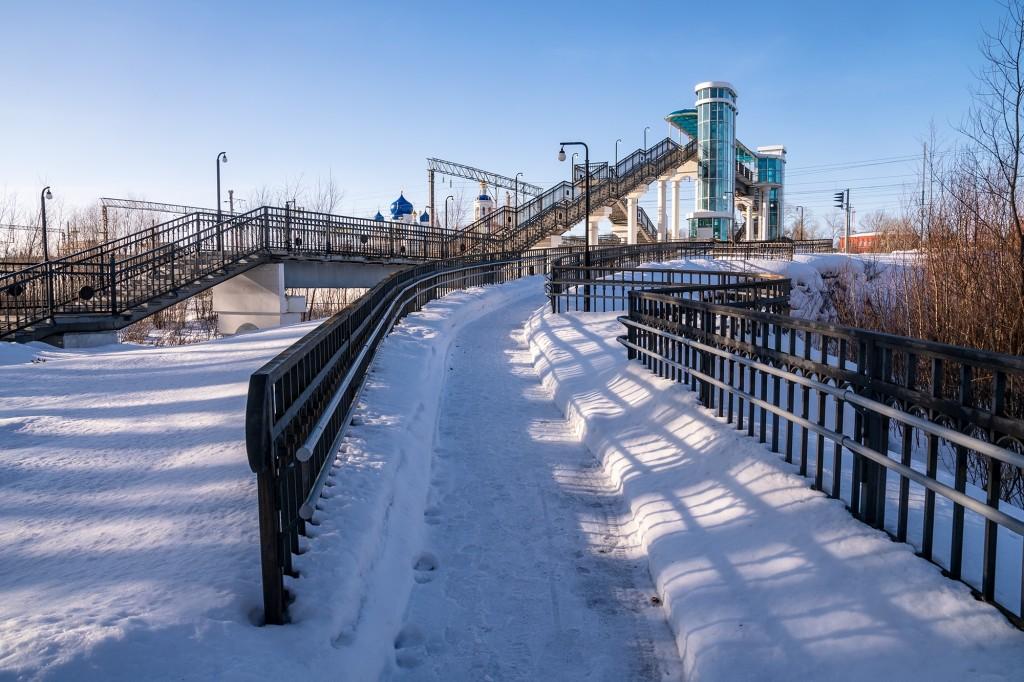 Покрова-на-Нерли, Боголюбово, Владимирская область, февраль 2019 04
