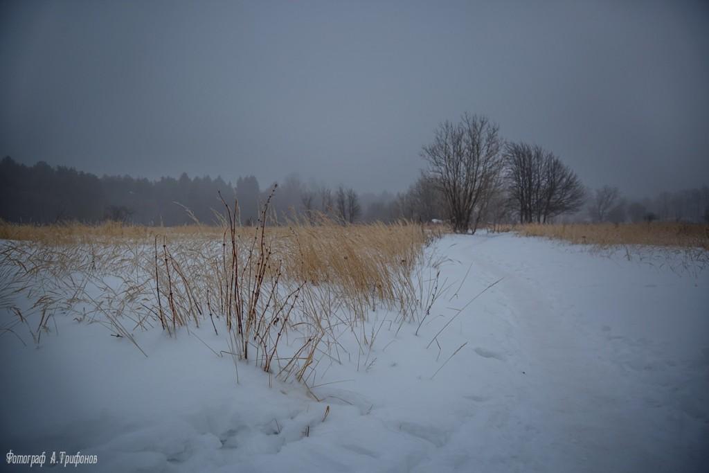 Тропинка в городском парке туманным утром. Муром, февраль 2019 01