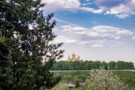 Май цветущий во Владимире (2019)