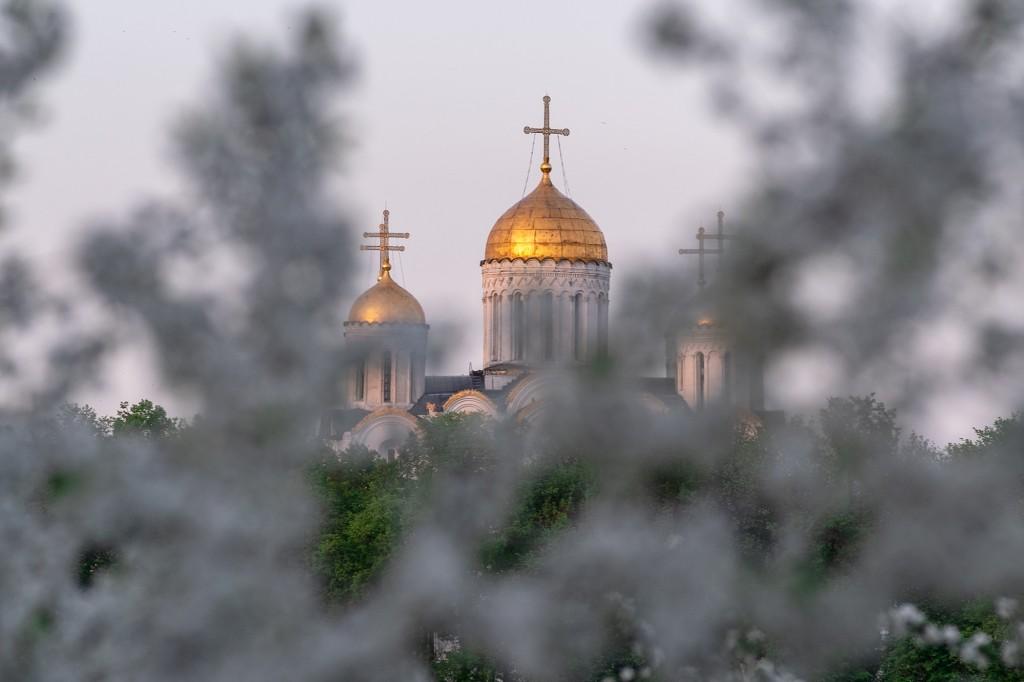 Май цветущий во Владимире 03