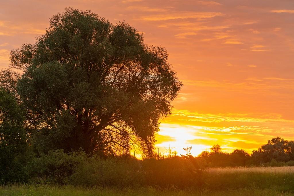 Чудесный, восхитительный рассвет на Покрова-на-Нерли. 03