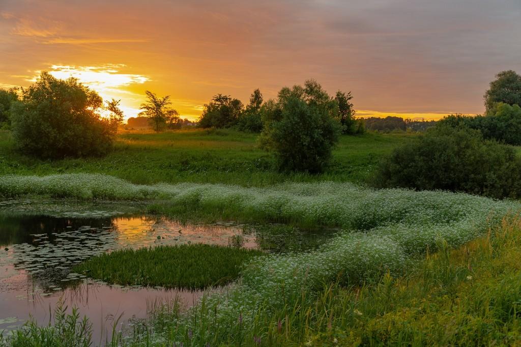Чудесный, восхитительный рассвет на Покрова-на-Нерли. 08