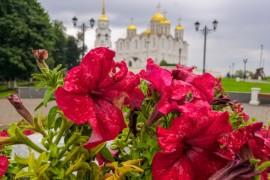 Владимир, июль 2019