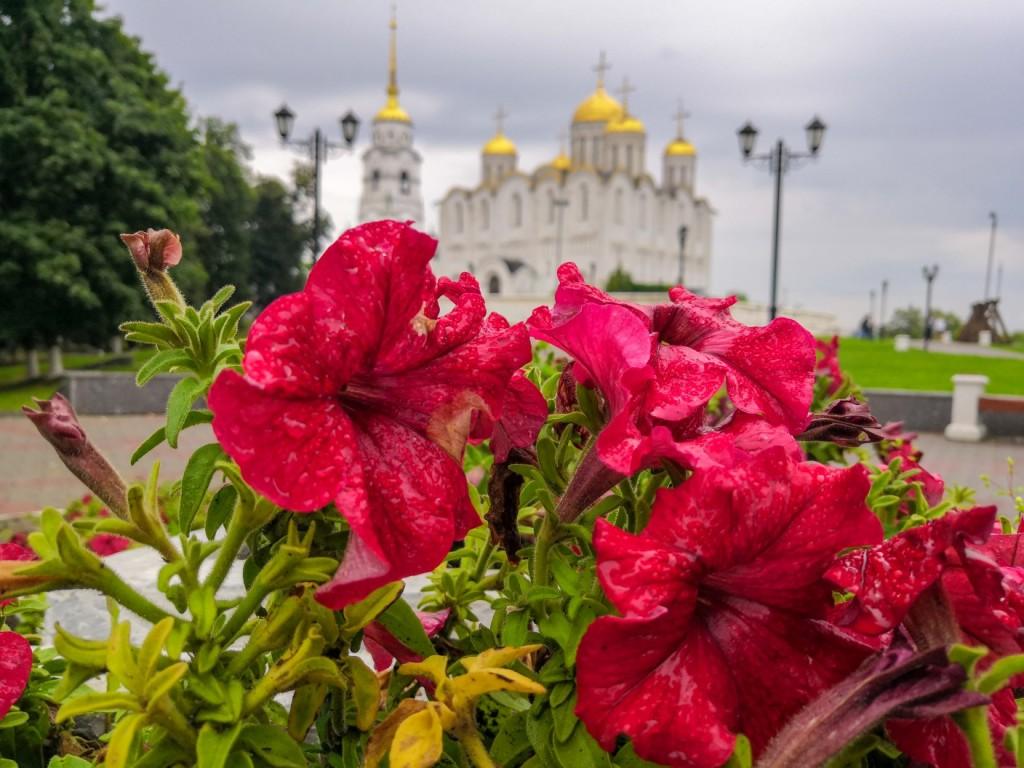 Владимир, июль 2019 01