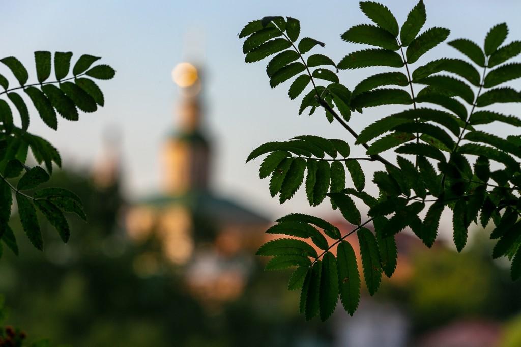 Город Владимир со стороны Патриарших садов 08