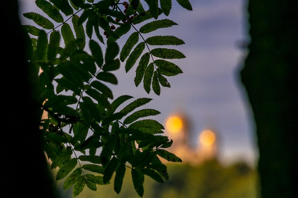 Город Владимир со стороны Патриарших садов 10