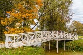 Золотая осень, или в гостях у Танеевых