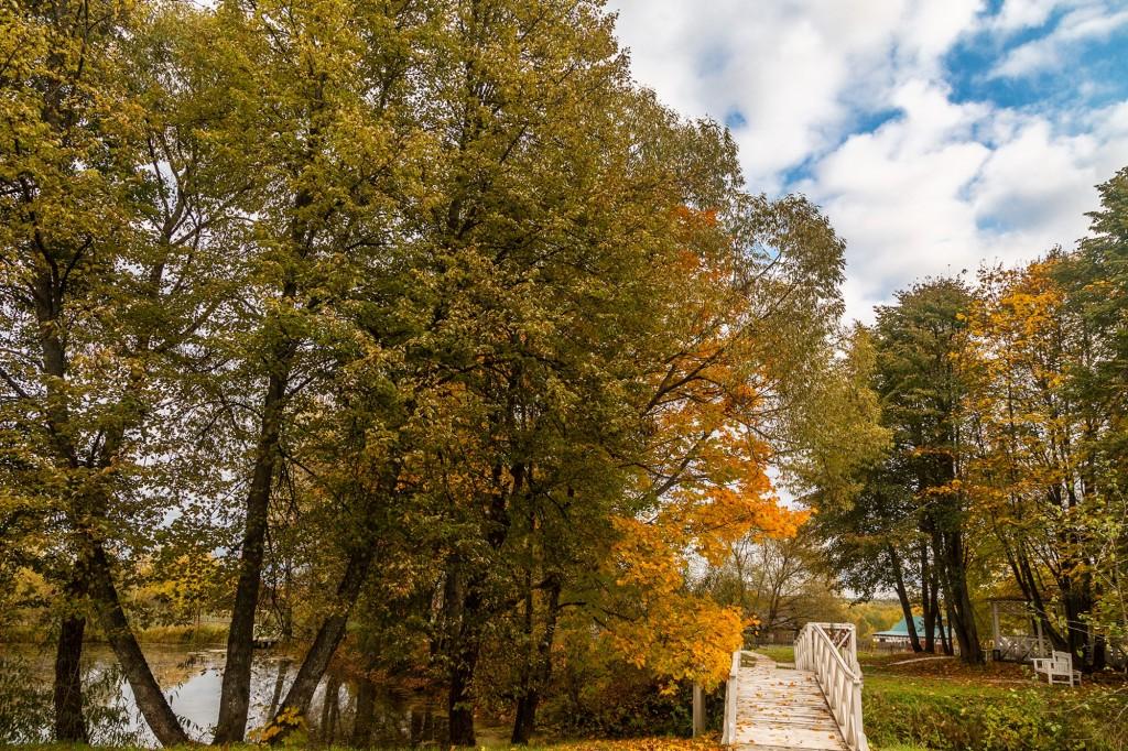 Золотая осень, или в гостях у Танеевых 03