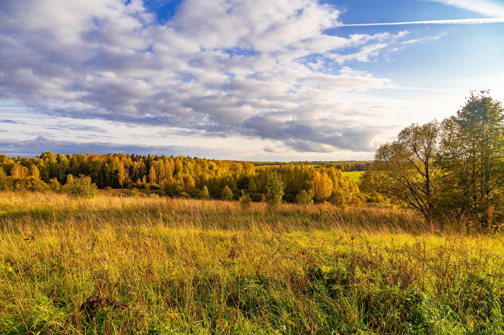 Село Маринино, Ковровский район 07