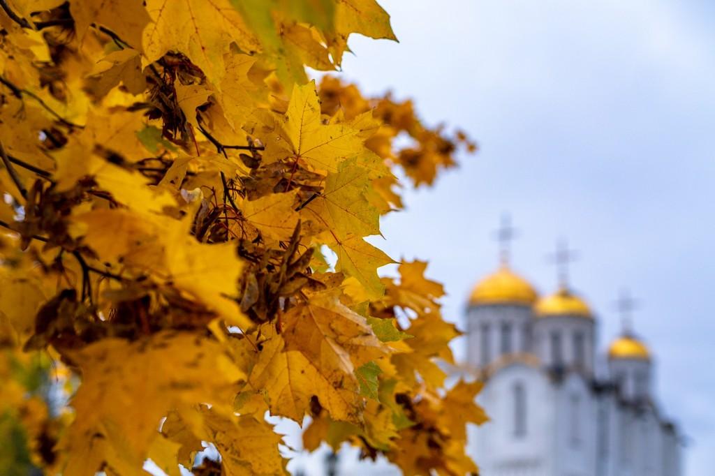 Яркий сентябрь во Владимире 2019 03