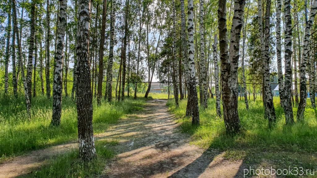 02 Парк в селе Ляхи, Меленковский район