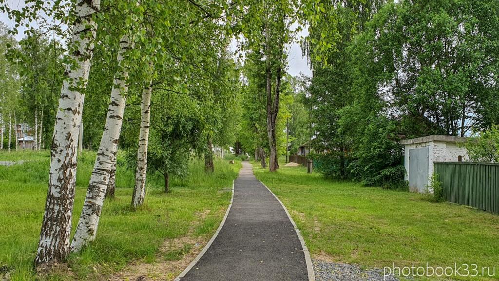 37 Парк в деревне Тургенево
