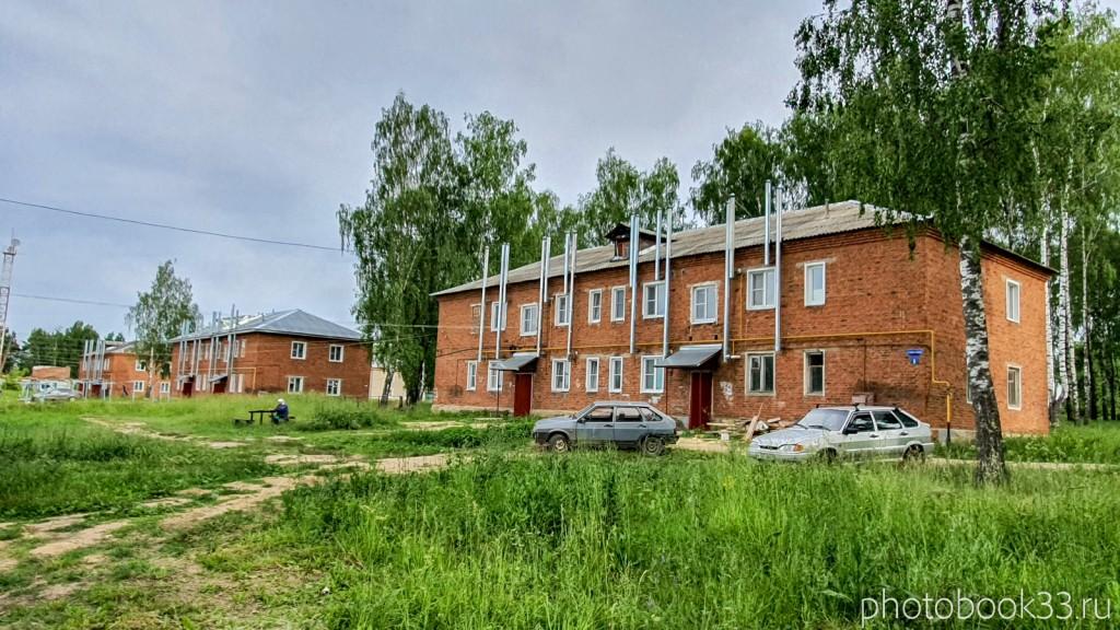 39 Двухэтажные кирпичные дома в деревне Тургенево Меленковского района