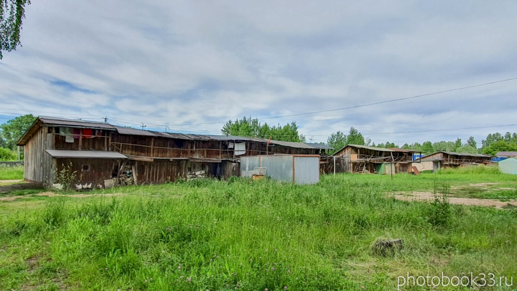 40 Сельское хозяство в деревне Тургенево