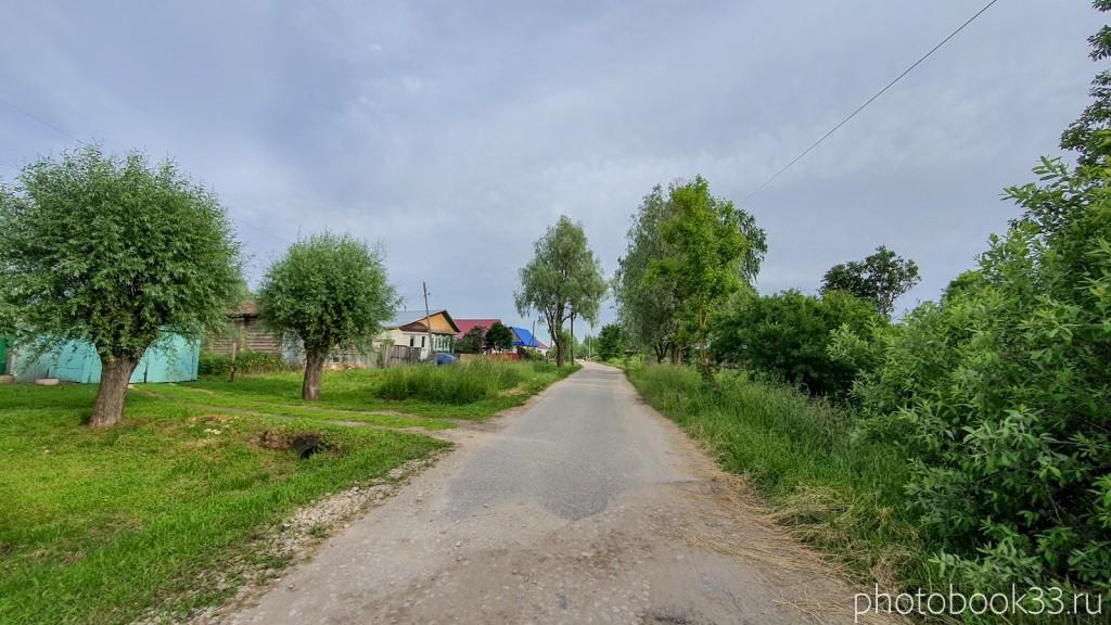 71 улицы в деревне Тургенево