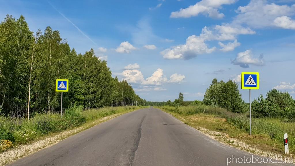 04 Дорога на Просеницы, Меленковский район